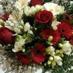 fiori-laurea-roma