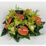 anthurium e orchidee