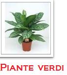 servizio_interflora_per_roma_manda_fiori_quanto_costa